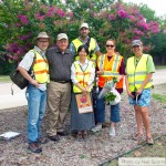 McKinney crape myrtle bark scale infestation assessment team (2014).  From left to right, Dr. Mike Merchant, Neil Sperry, (front) Dr. Mengmeng Gu, (back) Erfan Vafaie, Laura Miller, Janet Laminack.